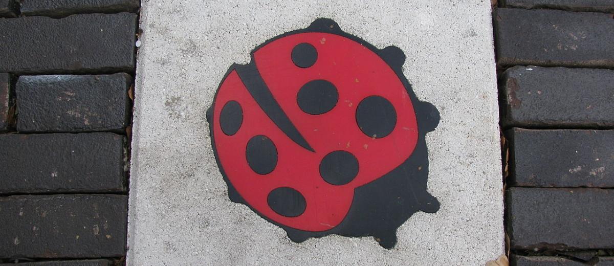 Symbool tegen zinloosgeweld (foto: Wikipedia)